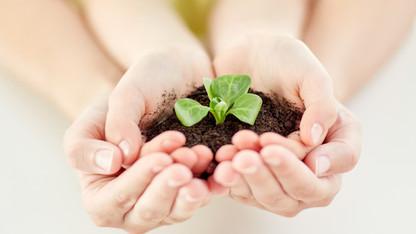 지구환경 작은일부터 실천하기
